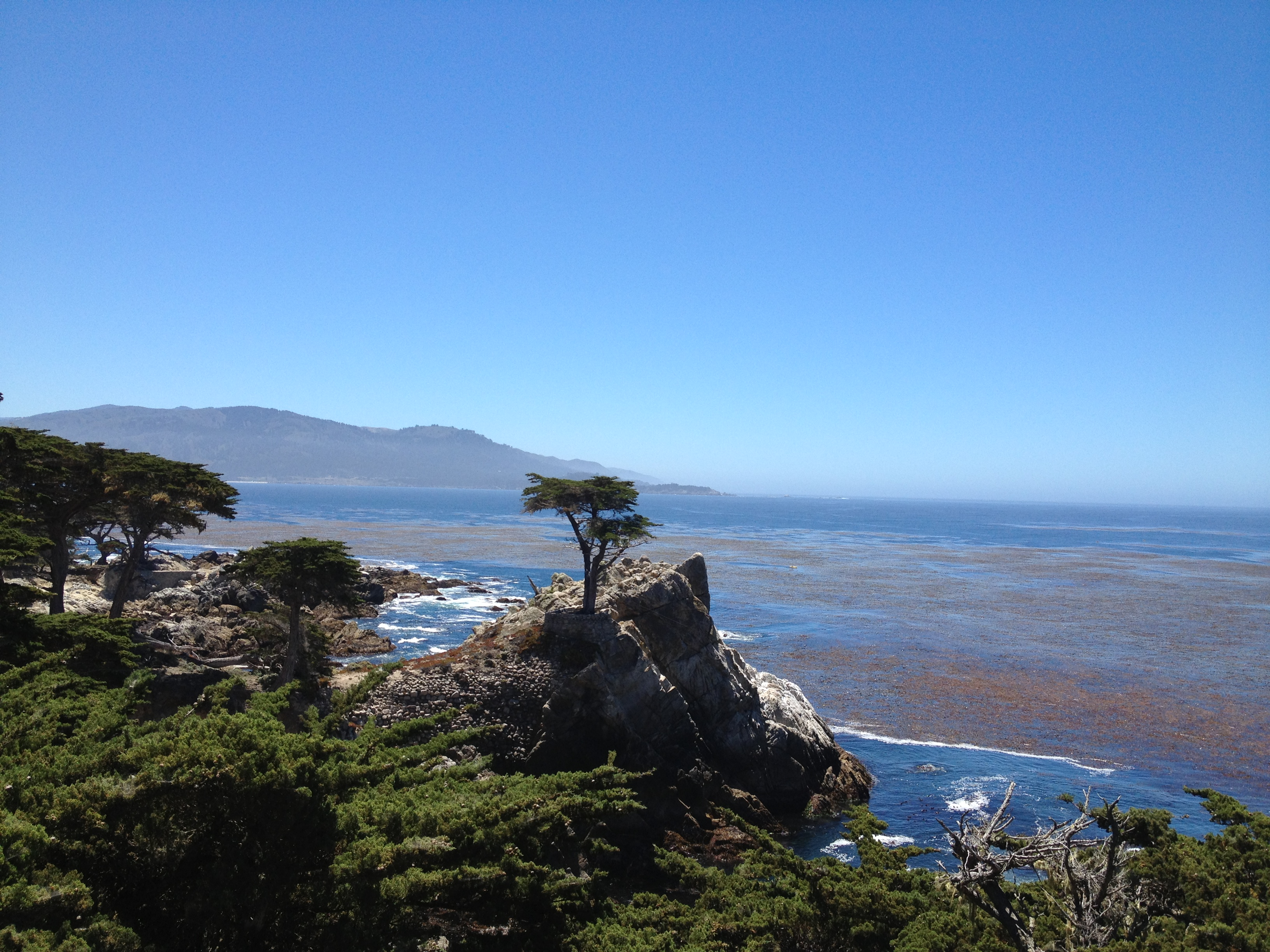 The Lone Cypress Pebble Beach