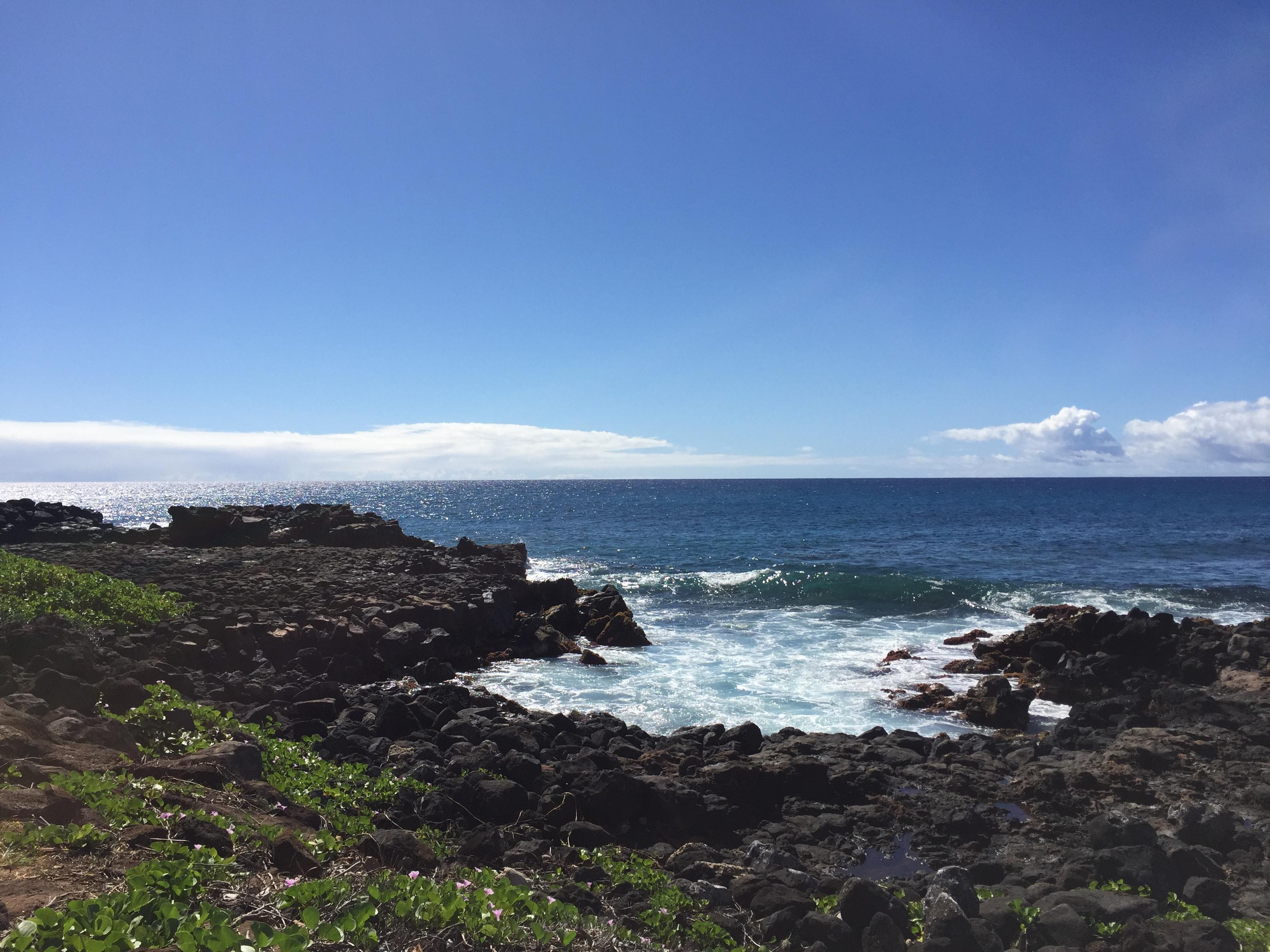 Lava Rocks Kauai