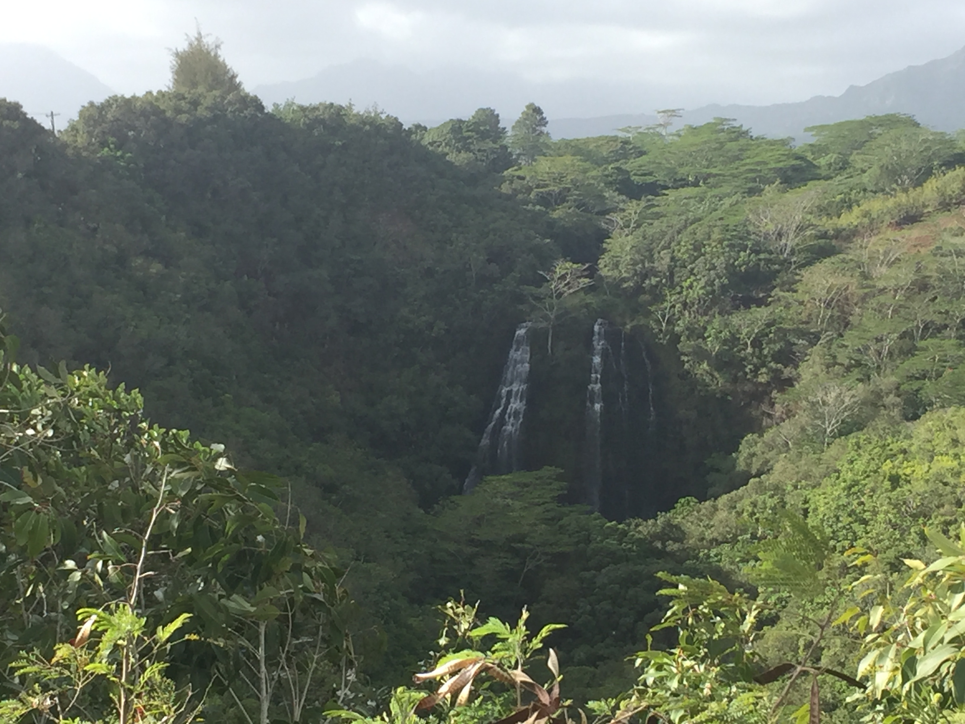 Opaeka'a Falls, one of Kauai's most accessible major waterfalls
